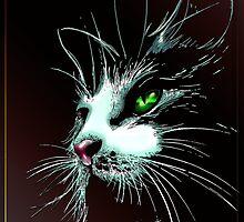 The Cat  by Bluesax
