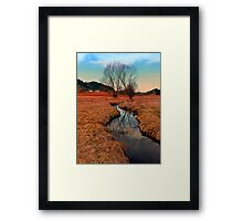 A stream, dry grass, reflections and trees | waterscape photography Framed Print