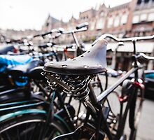 Amsterdam Bike Seat by Pierre Bourgault