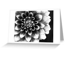 Mad About You Greeting Card