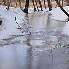Frozen Stream in Spring by Gary Horner