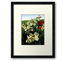 Sometimes I feel like i'm dying at dawn..sometimes I'm as warm as fire...but lately I feel like I'm just gone away..over and over Framed Print