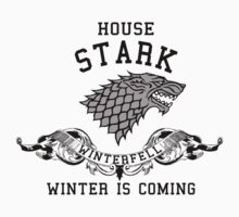 House Stark by bestbrothers