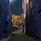One Way Street by RC deWinter