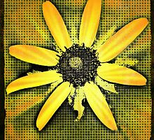 Miss Susie Sunshine by Lisa Taylor