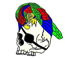 Parrot and Pirate Skull by imphavok