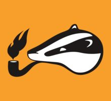 Badger Aflame by M  Bianchi