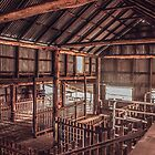 Rotherwood Woolshed by Candice84