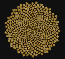 Sunflower Seed Fibonacci Spiral Golden Ratio Math Mathematics Geometry Kids Clothes