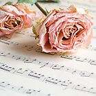 Rose Melody by Colleen Farrell