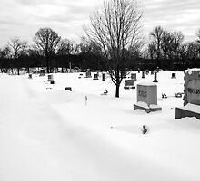 Winter Solace Cemetery Image 2 (B&W) by Petros Koutoupis