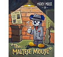 The Maltese Mouse Photographic Print