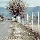 Countryside by hunnydoll