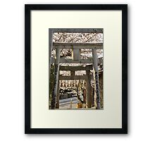cherry blossom and torii (another view) Framed Print