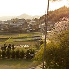 late afternoon countryside japan by parisiansamurai