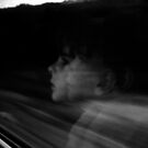 Reflection on a Train at 300kmph by Berns