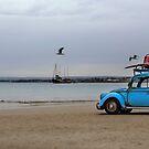 Little Blue Beatle ~ In Search of Surf  by Pene Stevens