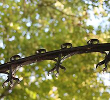 Metal and Leaves by shoelock