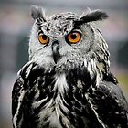 Eagle owl by jade-cooper-art