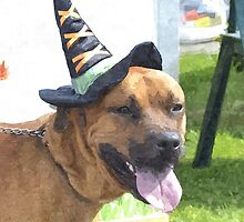 Haloween Dog by mikes-photos