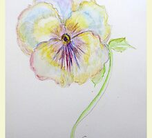 multi color pansy by Gea Austen