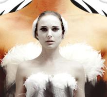 Black Swan sweet girl Sticker