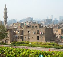 A corner of Cairo by Carol Fan