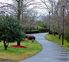 Rainy Day In The Park by Cynthia48