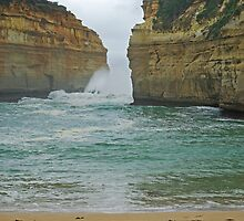 Windswept Loch Ard Gorge by TeaCee