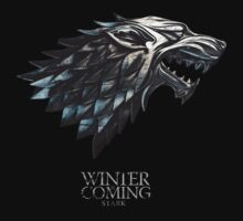 Game of Thrones … Winter is Coming by OliveB