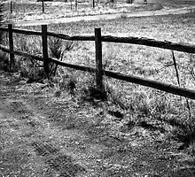 Wood Fence and Tire Tracks by Roger Passman