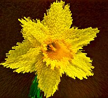 Way of the exploding daffodil by Paul Madden