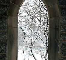 A View Through Stone by Cora Wandel