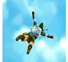 Fly Link, Fly!! by paky216