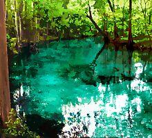 Ginnie Springs by AllyFlorida
