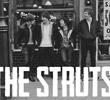 the struts picture and logo by natalieayy