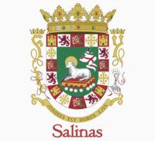 Salinas Shield of Puerto Rico by William Martin