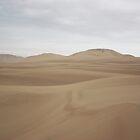 Huacachina Desert by Tess Mitchell