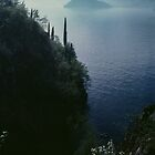 Lago Como  Bellagio Road Italy 198404240056 by Fred Mitchell