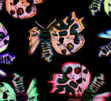 neon moths on black by ak4e