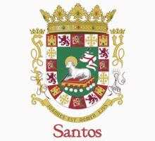 Santos Shield of Puerto Rico by William Martin