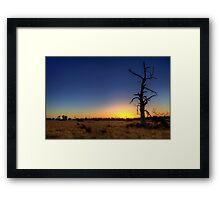 """""""Sunset Tree"""" Framed Print"""