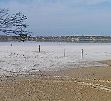 Salt lake, Kangaroo Island, South Australia  by Margaret  Hyde