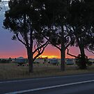 Sunrise, between Stawell and Horsham, Vic., Australia by Margaret  Hyde