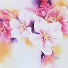 Apple-Blossom by Bev  Wells