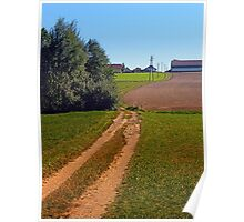 Trees, meadows, pathway to the village | landscape photography Poster