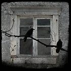 Outside The Old wIndow by gothicolors