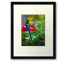 What Is My Name? Framed Print