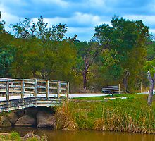 Lilydale Lake Pano Vic Australia by PhotoJoJo