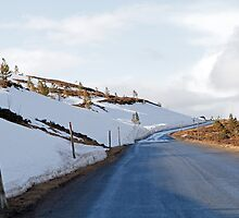 The road leading up to the Cairngorm Mountain  by Keith Larby